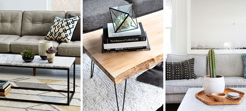 11 Of The Best Plants To Have On Your Coffee Table